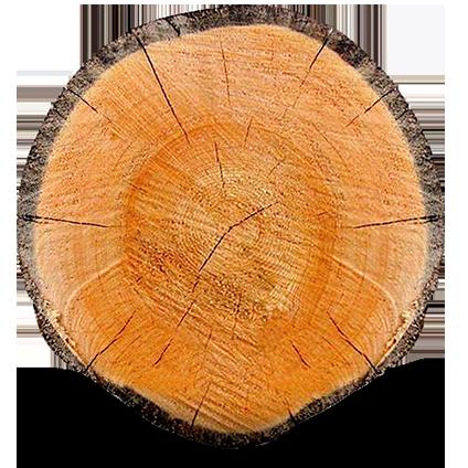 Rovaniemi Log House werkt met verschillende houtmaterialen.