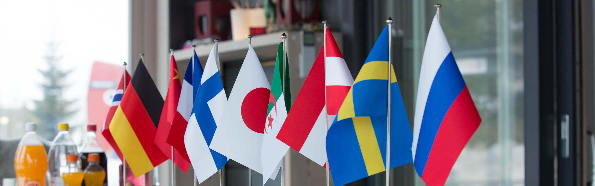 ¡Póngase en contacto con nosotros! – Rovaniemi Casas de Madera